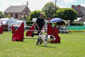 concours_agility_2015-108