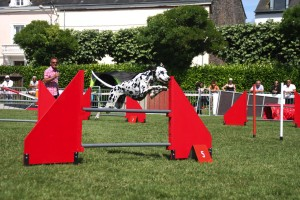 concours_agility_2015-132